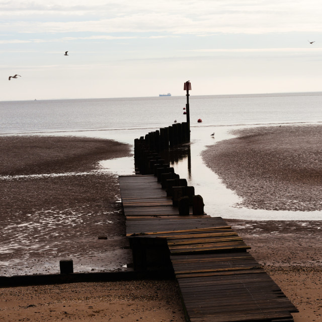 """""""Jetty leading out to sea"""" stock image"""