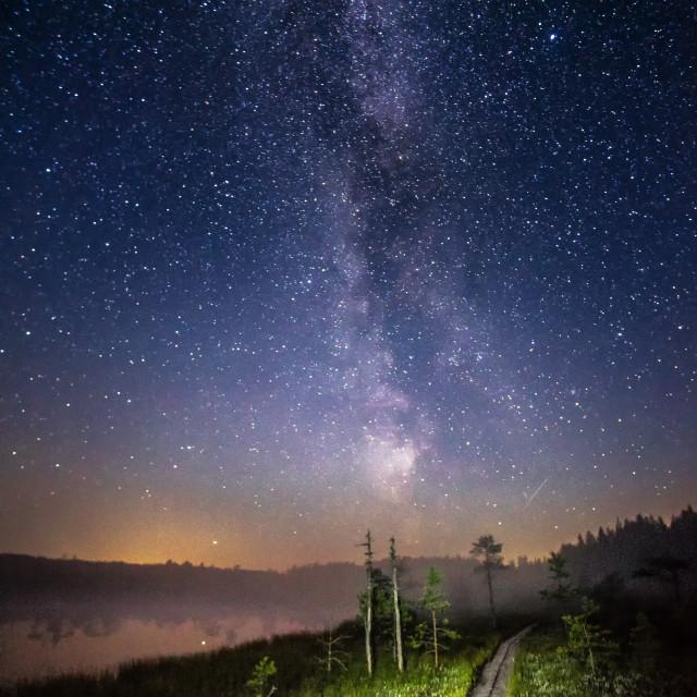 """""""Night"""" stock image"""