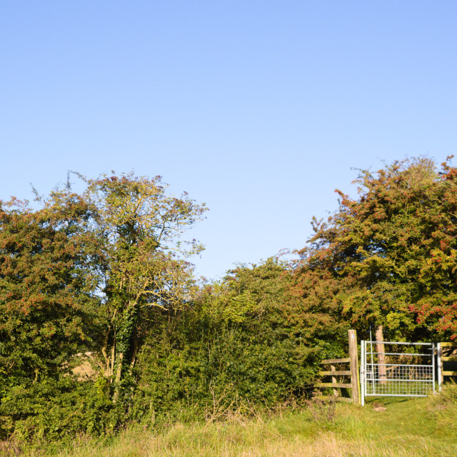 """""""Lincolnshire Wolds, UK, bridleway gate."""" stock image"""