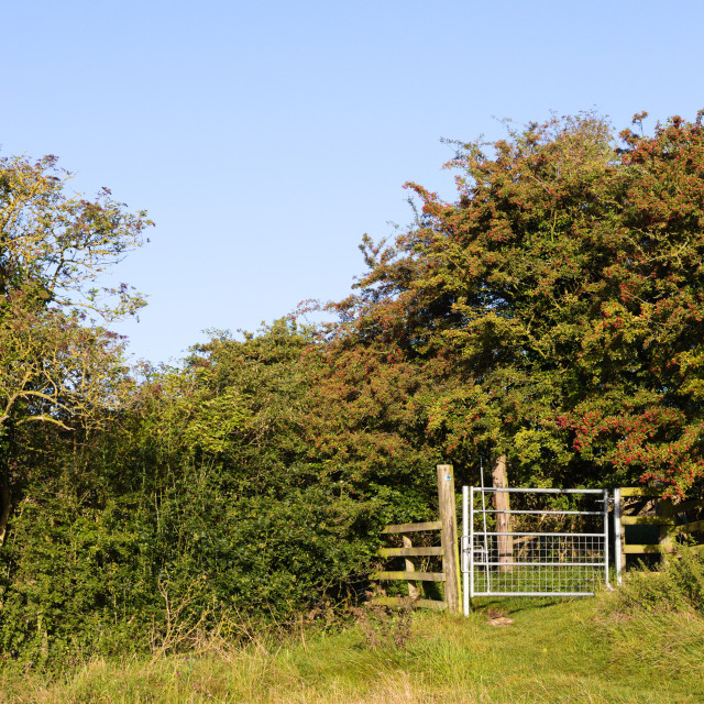 """Lincolnshire Wolds, UK, bridleway gate."" stock image"
