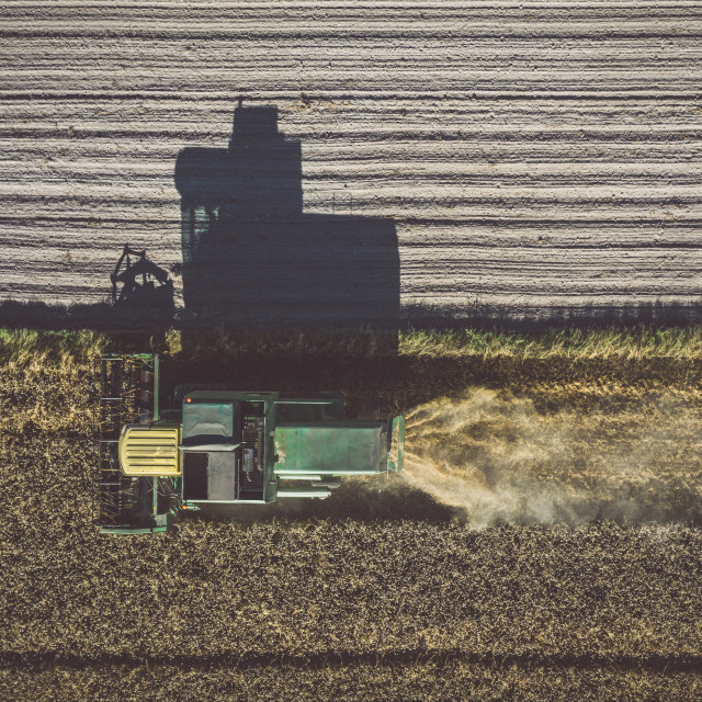 """""""Aerial top down view of combine harvester working in the field, harvesting time"""" stock image"""