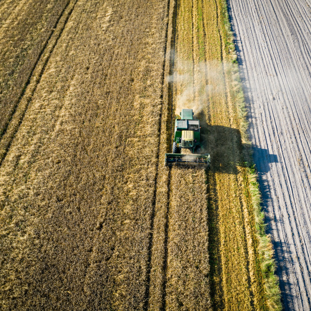 """""""Aerial view of combine harvester working in the field, harvesting time"""" stock image"""