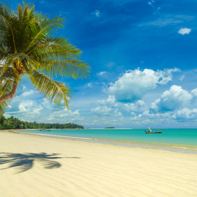 """Amazing tropical beach landscape"" stock image"