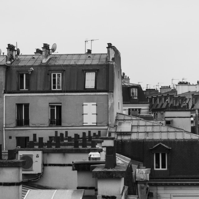 """Cityscape and Skyline of Paris in Black and White"" stock image"