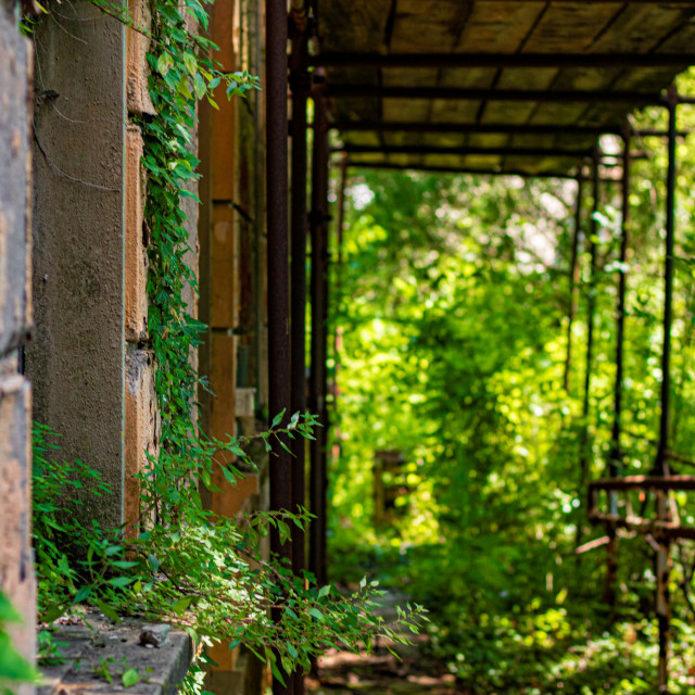"""Repairs On An Italian Building in The Tuscan Forests - Italy"" stock image"