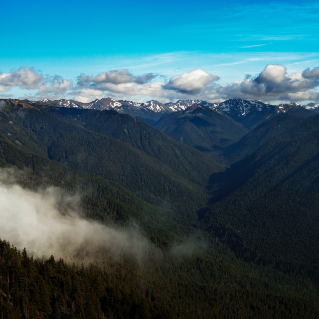 """""""Olympic National Park Clouds Spilling Over Mountain"""" stock image"""