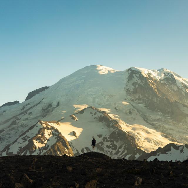 """""""Mount Rainier Silhouette Panorama"""" stock image"""