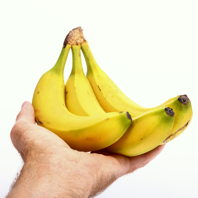 """""""Mans hand holding a bunch of bananas isolated on a white background"""" stock image"""