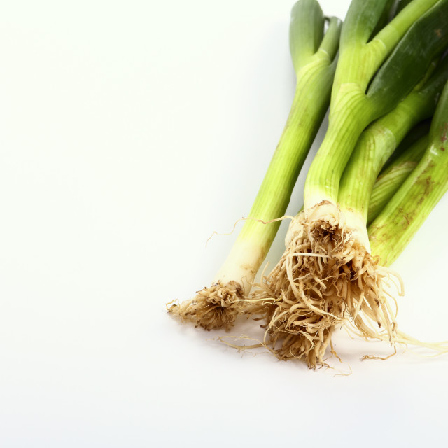 """""""Bunch of spring green onions isolated on a white background"""" stock image"""