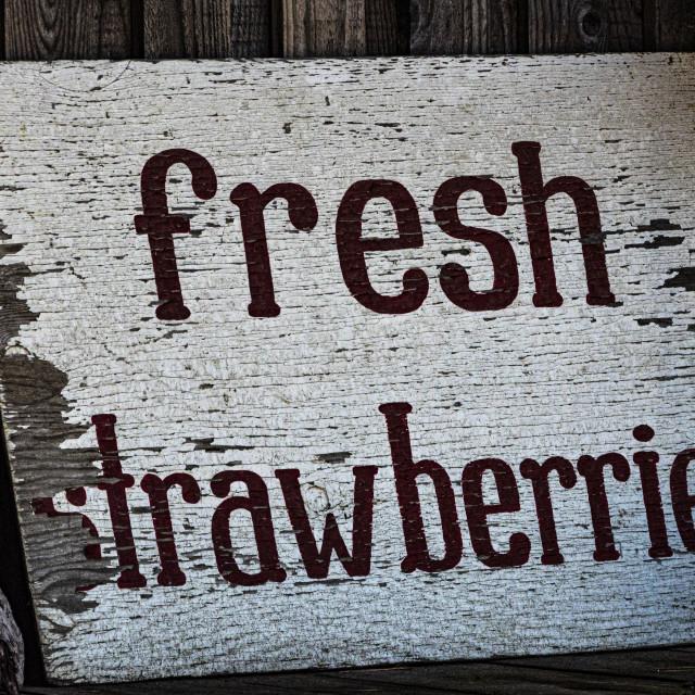 """""""Fresh Strawberries"""" stock image"""