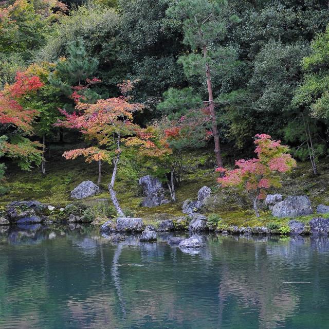 """""""Sogen Pond Garden"""" stock image"""