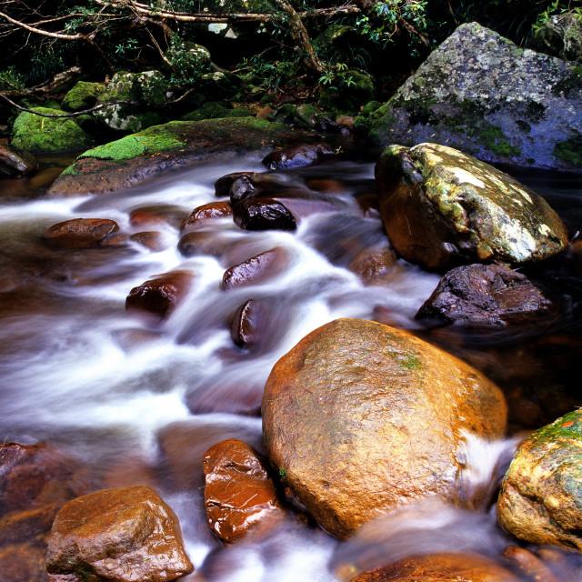"""Brogers Creek"" stock image"