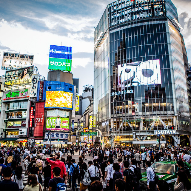 """Shibuya Crossing"" stock image"
