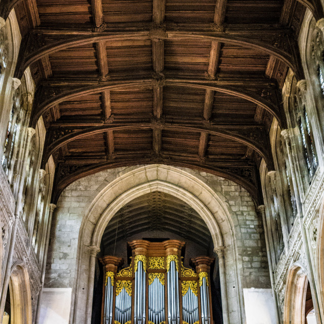 """""""Organ and rafters of Great St Mary's Church, Cambridge UK."""" stock image"""