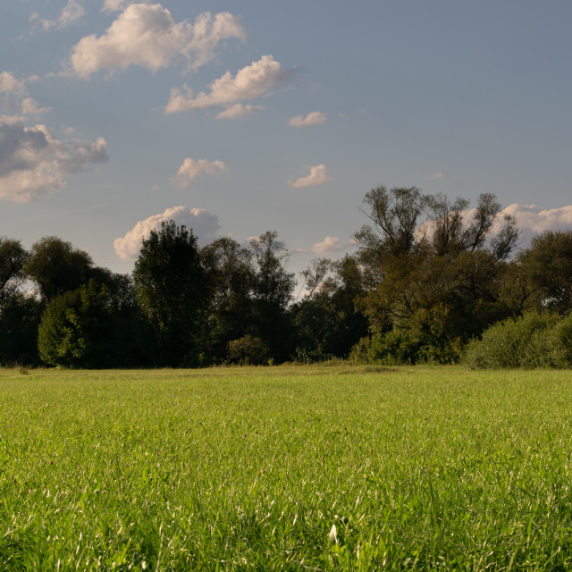 """""""Clouds over a green field"""" stock image"""
