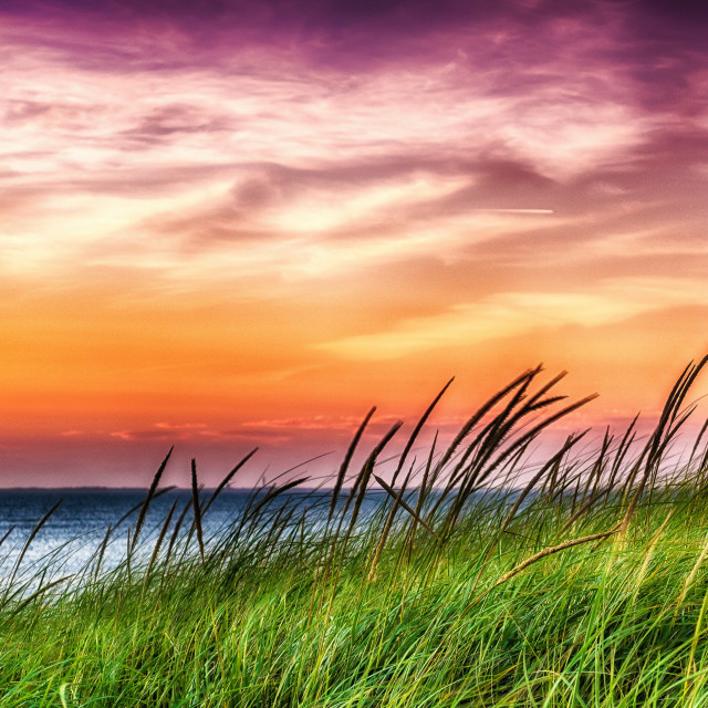 """""""Sunset at Cape Cod Bay"""" stock image"""