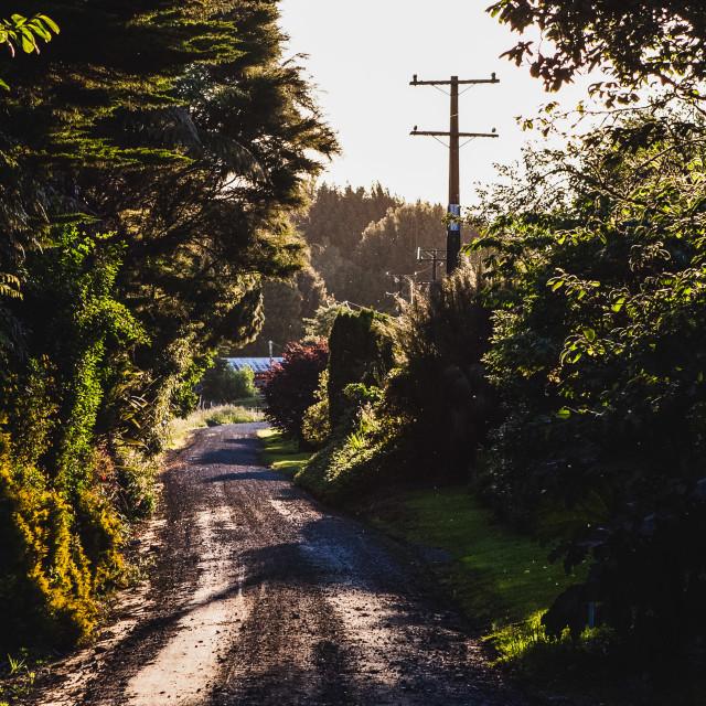 """Tapuwae Road"" stock image"