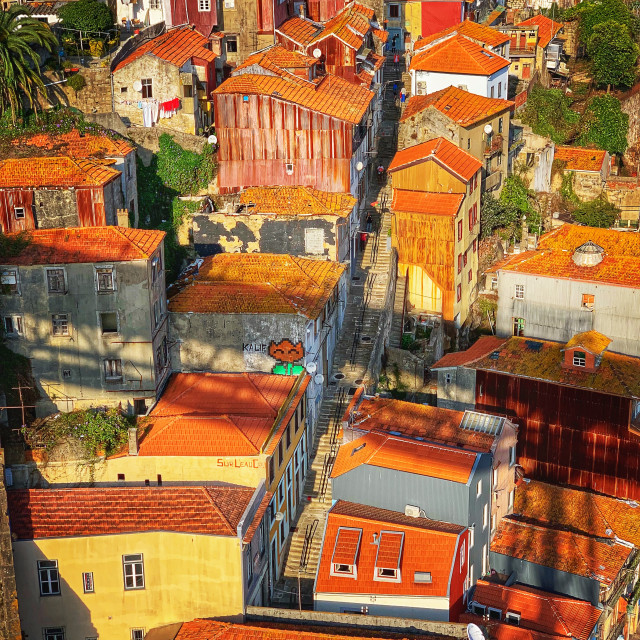 """""""Porto Red Roofs"""" stock image"""