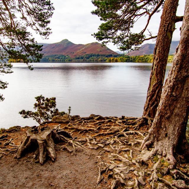 """Scenic View of Lake Derwentwater, Cumbria, England. Landscape Orientation."" stock image"