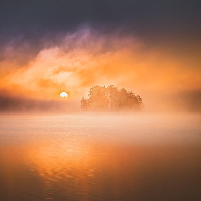 """""""Misty Sunrise II"""" stock image"""