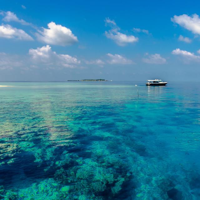 """Villingili, Maldives Islands"" stock image"