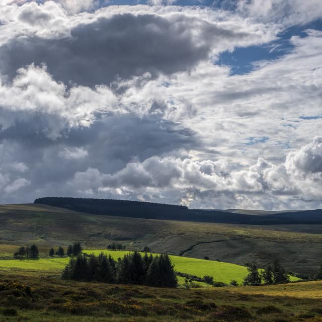 """Stormy skies - Fernworthy Forest"" stock image"