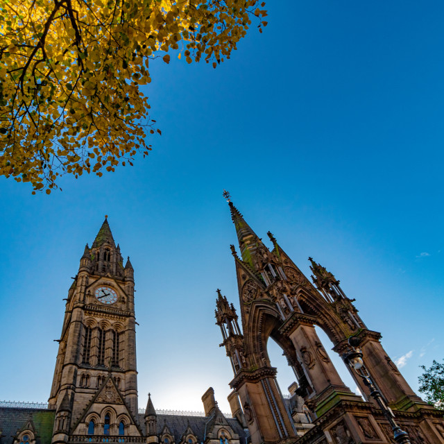 """Wide Angle View of Manchester Town Hall In The Golden Hour Morning Light With Greenery - Manchester, UK"" stock image"
