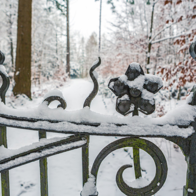 """old park in snow"" stock image"