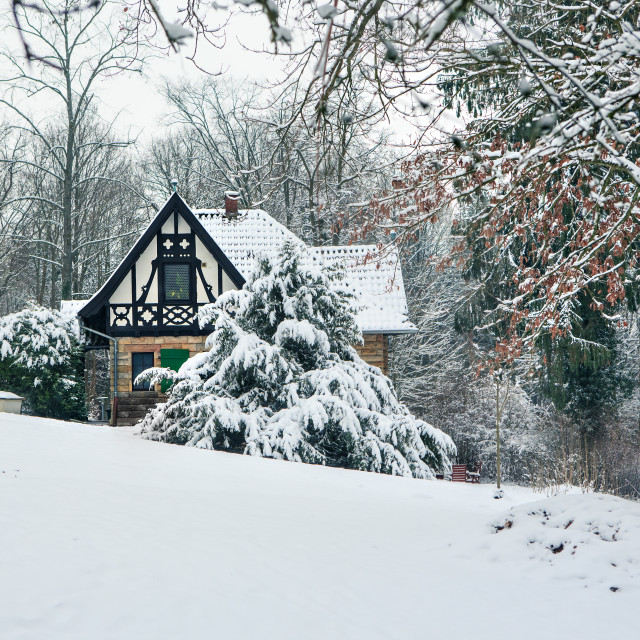 """Old house under the snow"" stock image"