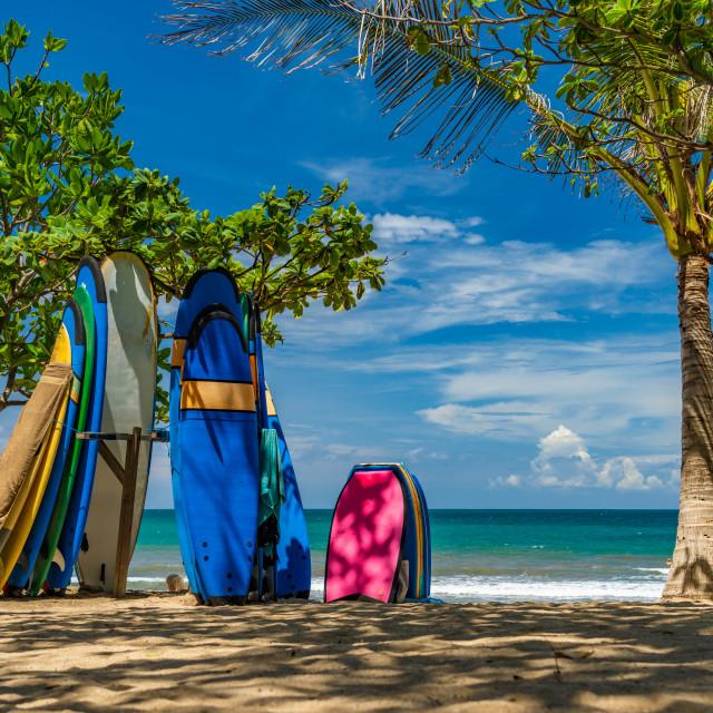 """Surf boards on the beach in Kuta Bali"" stock image"