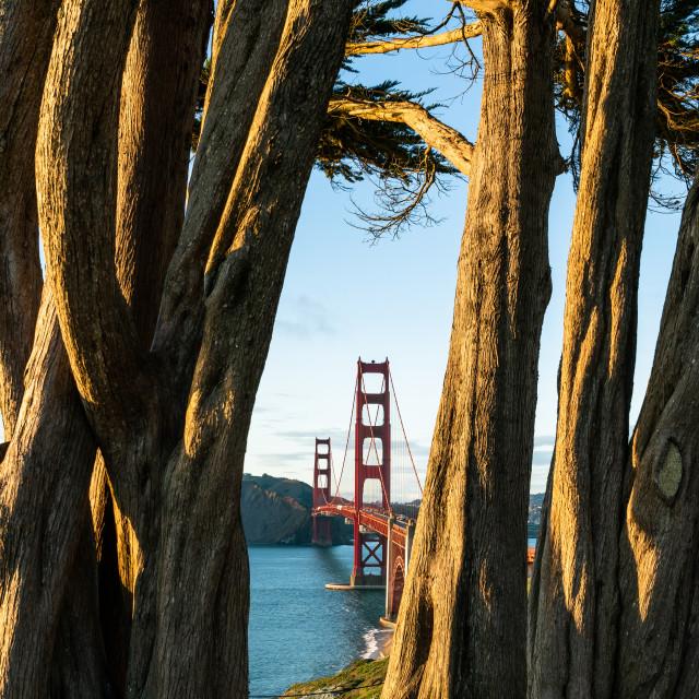 """Golden hour Golden Gate bridge."" stock image"
