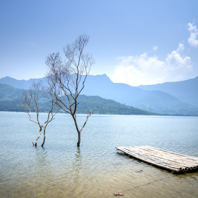 """""""Beautiful pictures of bamboo rafts with dry trees on Lap An lagoon, Hue city, Vietnam"""" stock image"""