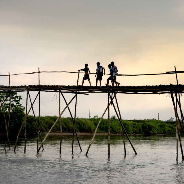 """""""Rural children on a bamboo bridge made in Cam Dong village, Quang Nam province, Vietnam"""" stock image"""