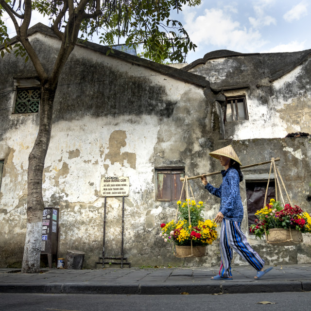 """""""a woman selling flowers on a pair of bamboo frames in Hoi An Ancient Town, Quang Nam Province, Vietnam"""" stock image"""
