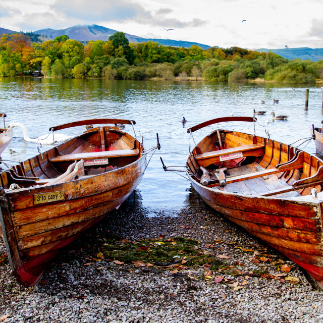 """""""Clinker Built Rowing Boats for Hire on Foreshore, Derwentwater, Keswick, Landings."""" stock image"""