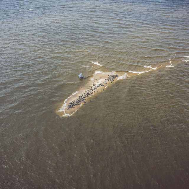 """""""Aerial view of the Seal Island near Vistula mouth to the Baltic sea"""" stock image"""