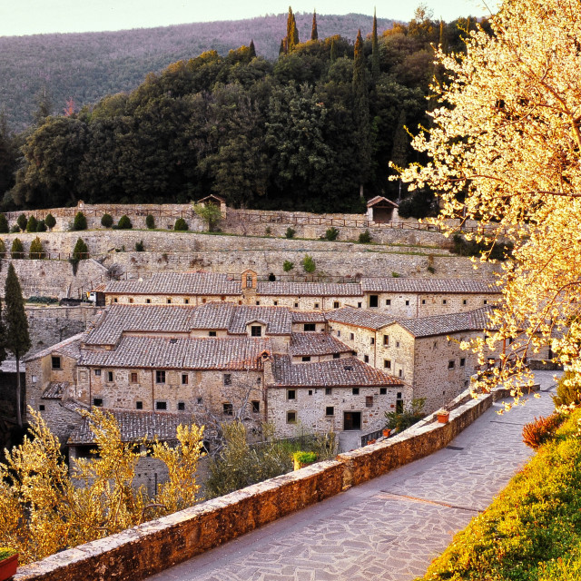 """""""Le Celle - Franciscan convent in Cortona, Tuscany"""" stock image"""