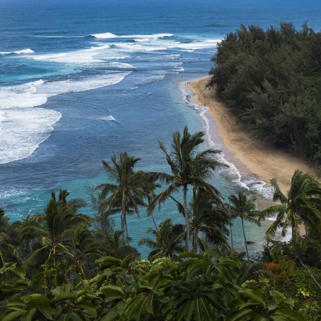 """""""Ke'e Beach, Kauai"""" stock image"""