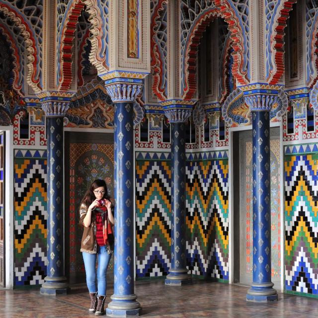"""""""Castello di Sammezzano"""" stock image"""