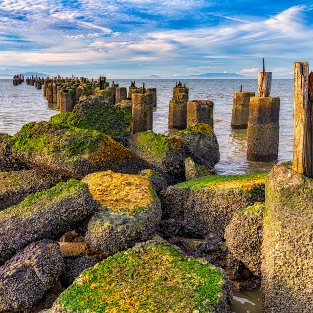 """""""Ruined Pier at Hercules Point"""" stock image"""