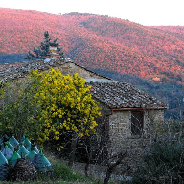 """Old Tuscan hillfarm at sundown"" stock image"