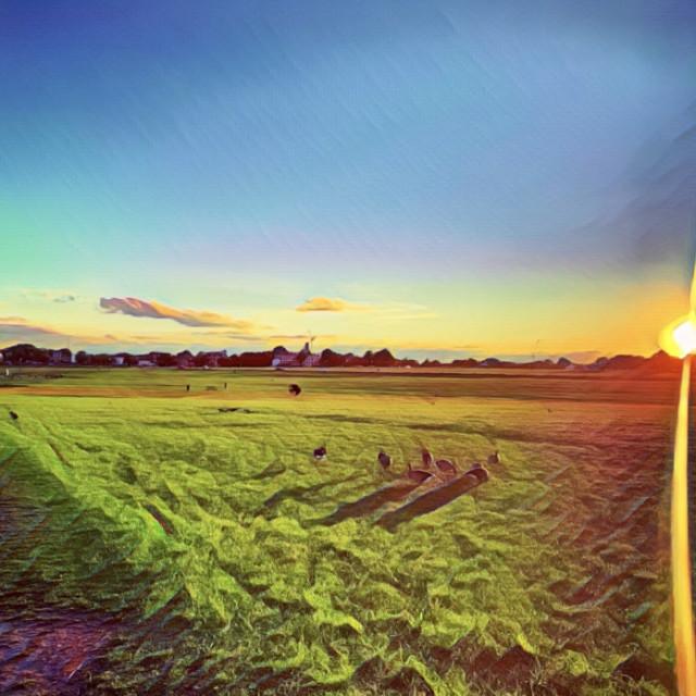 """Blackheath Common Sunset Painting"" stock image"