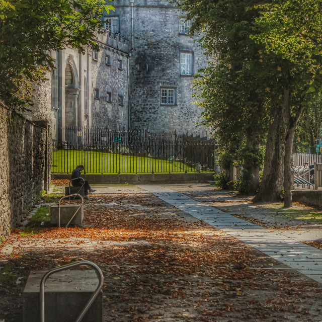 """""""Kilkenny Castle."""" stock image"""