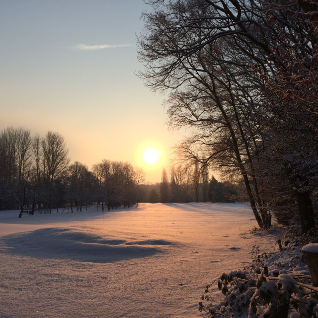 """Snowy Sunrise in Hartswood"" stock image"