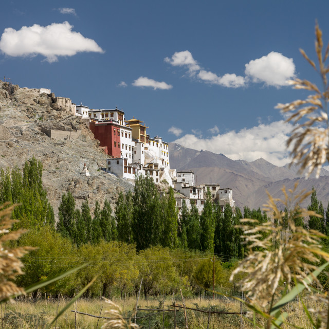 """Spituk monastery seen from the Indus Valley, Ladakh"" stock image"