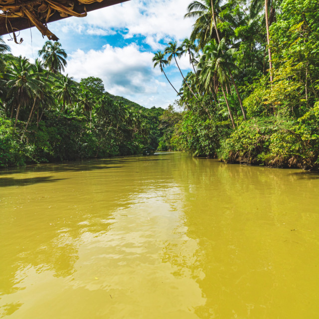 """The Loboc River of Bohol Cutting Through The Rainforest - The Philippines, Asia"" stock image"