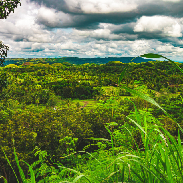 """Gloomy Skies Over The Famous Chocolate Hills of Bohol - The Philippines"" stock image"