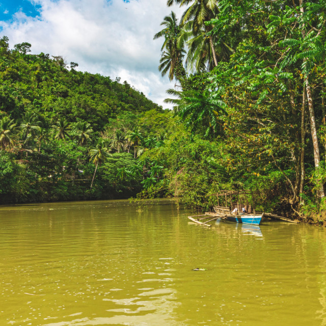 """A Lone Canoe On The Loboc River, Bohol - The Philippines, Asia"" stock image"
