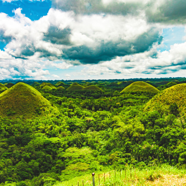 """Lush Green Jungle Surrounding The Famous Chocolate Hills of Bohol - The Philippines, Asia"" stock image"