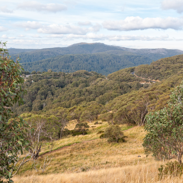 """Autumn view - Mt Buller"" stock image"